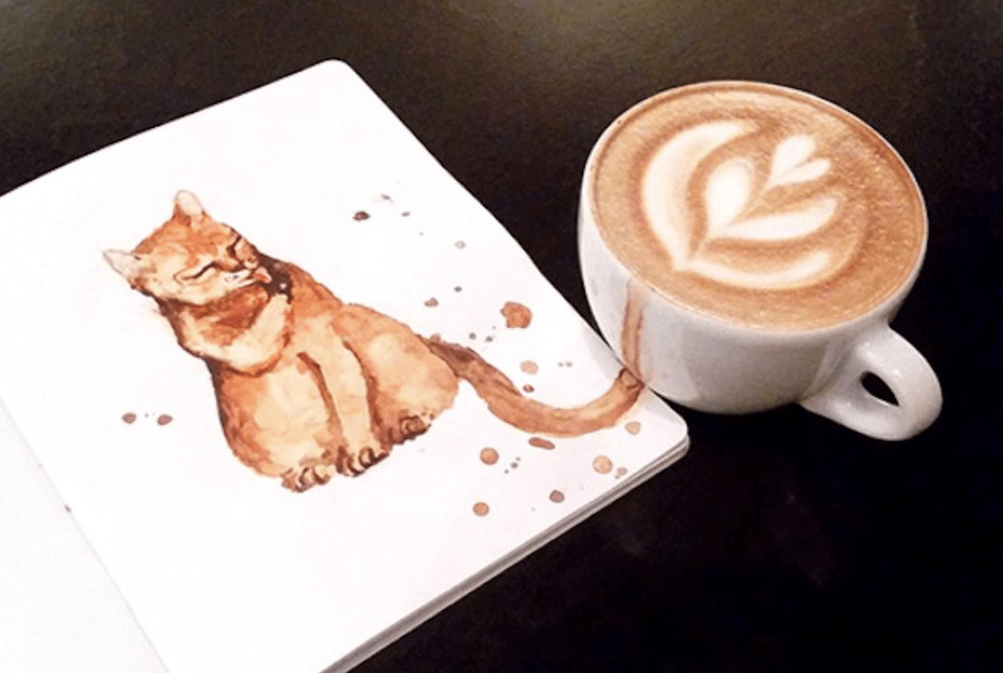 Cappuccino gatto