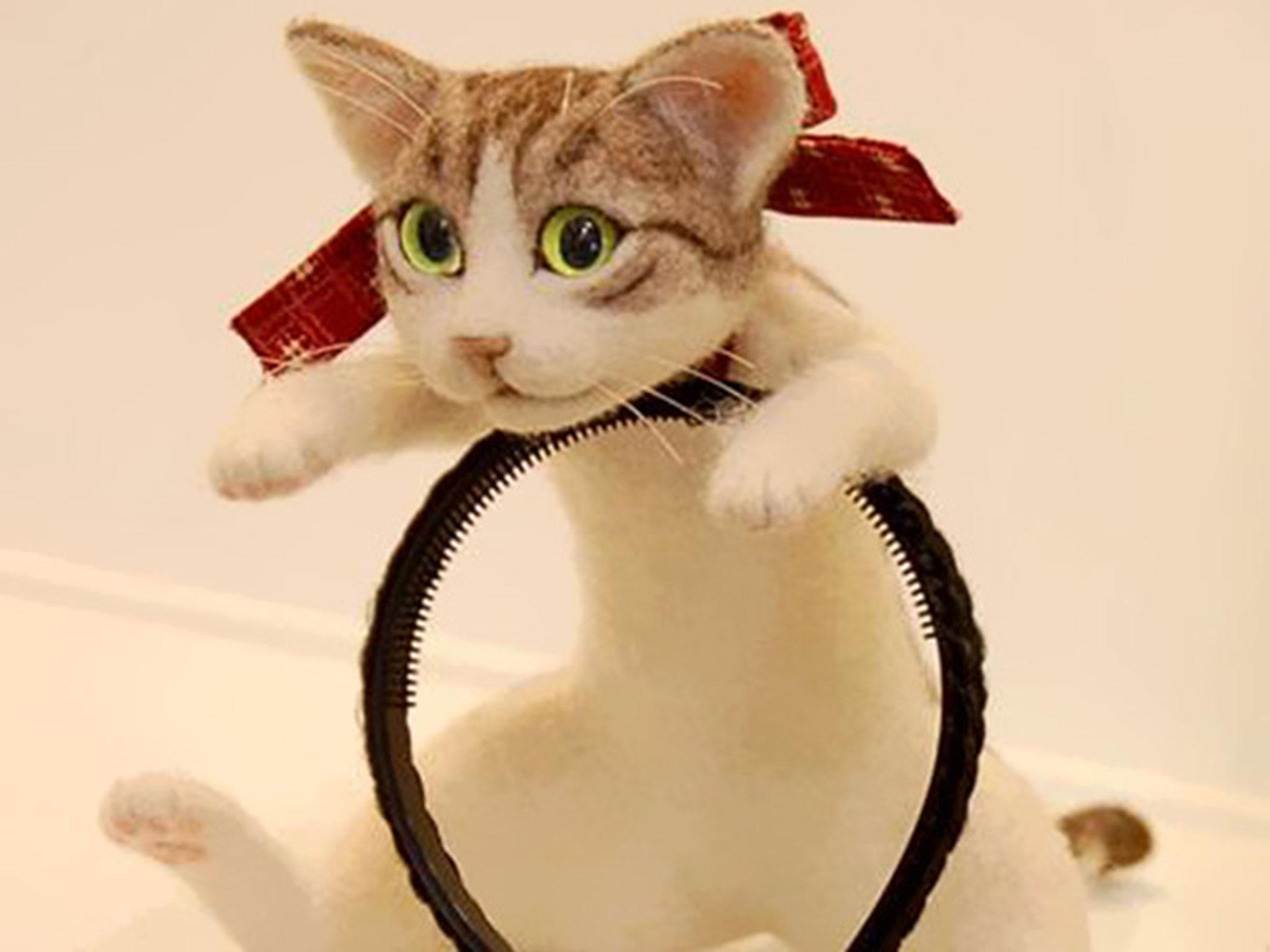 Cerchio per capelli gatto