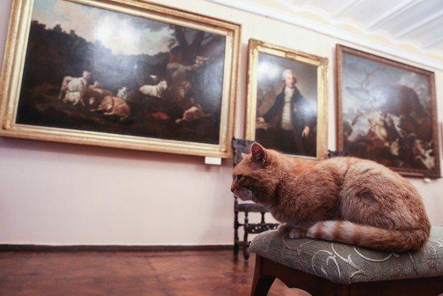 Maray, custode del museo di Serpukhov