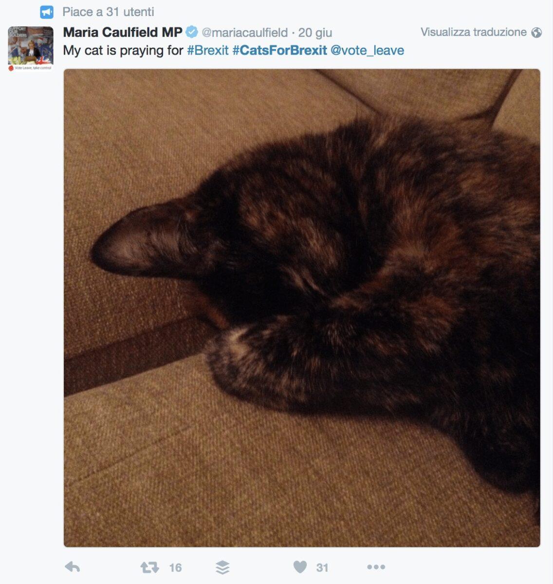 Il tweet di Maria Caulfield