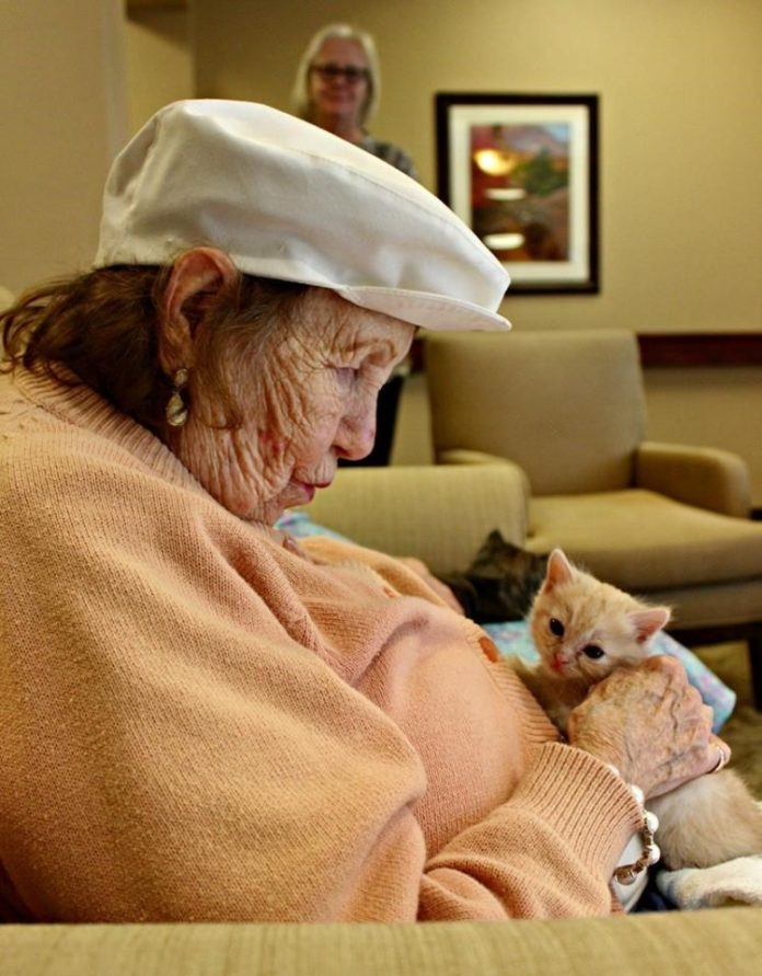I gattini del PACC allattati dai residenti della casa di cura di Oro Valley