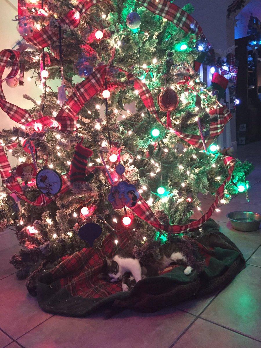 Tink sotto l'albero con i suoi piccoli