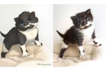 gatti disegni disney copertina gallery